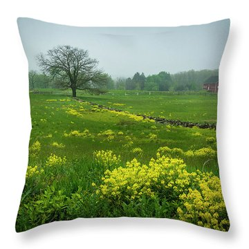 Battlefield Beauty Throw Pillow