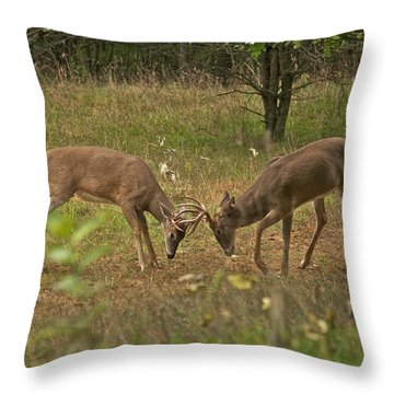 Battling Whitetails 0102 Throw Pillow by Michael Peychich