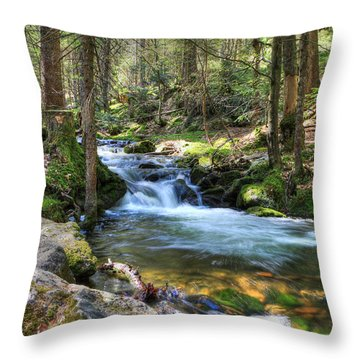 Bavarian Stream Throw Pillow