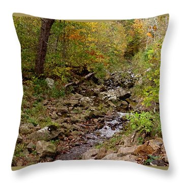 Baxter's Hollow II Throw Pillow by Kimberly Mackowski