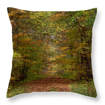 Throw Pillow featuring the photograph Baxter's Hollow  by Kimberly Mackowski