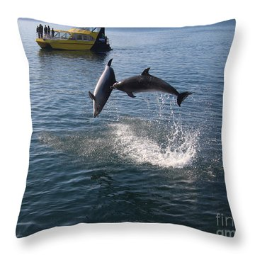 Bay Of Island Dolphins Throw Pillow