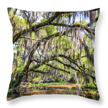 Bayou Cathedral Throw Pillow