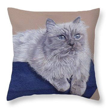 Bayou - Portrait Of A Himalayan Throw Pillow by Patricia Barmatz