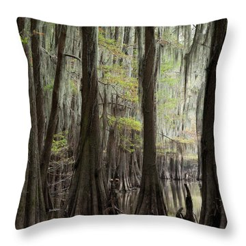 Bayou Trees Throw Pillow