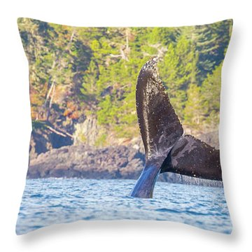 Bc Tailing  Throw Pillow