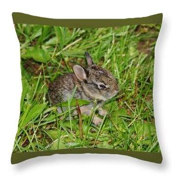 Throw Pillow featuring the photograph Be Brave. Take A Chance. by Vadim Levin