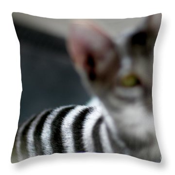 Be Careful What You Focus On  Throw Pillow