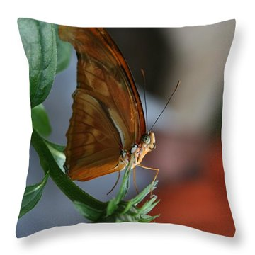 Throw Pillow featuring the photograph Be Happy by Cathy Harper