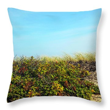 Throw Pillow featuring the photograph Be Kind To The Dune Plants by Madeline Ellis