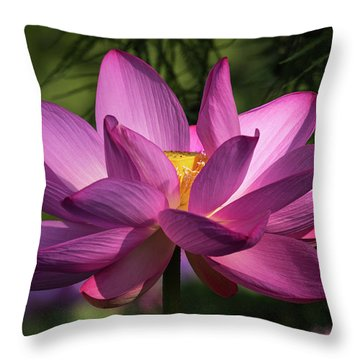 Be Like The Lotus Throw Pillow