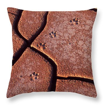 Be On The Lookout Throw Pillow