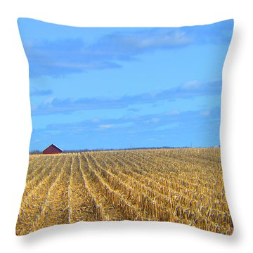Be Still And ... Throw Pillow