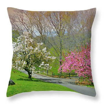 Throw Pillow featuring the photograph Be True To Yourself by Diana Angstadt