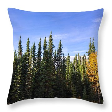 Throw Pillow featuring the photograph Be Yourself by Carl Young