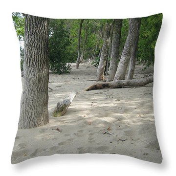 Beach At The Lake Throw Pillow