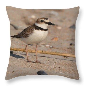 Beach Bird Throw Pillow