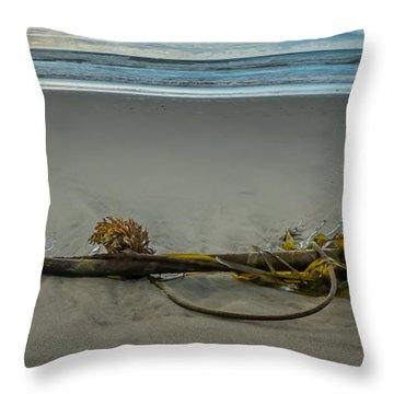Beach Bull Kelp Laying Solo Throw Pillow