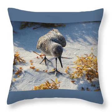 Beach Combing Throw Pillow