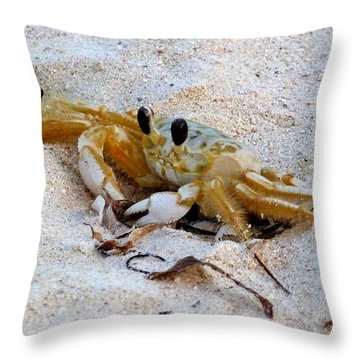 Beach Crab Throw Pillow