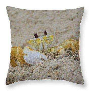 Beach Crab In Sand Throw Pillow
