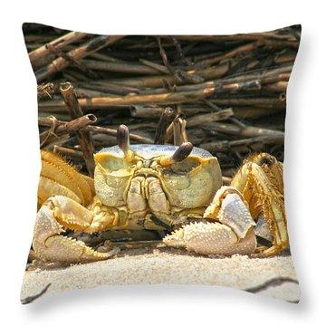 Beach Crab Throw Pillow