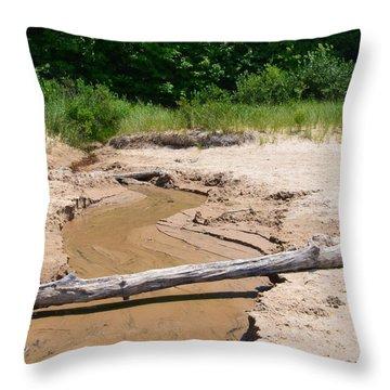 Beach Creek Throw Pillow by Michelle Calkins
