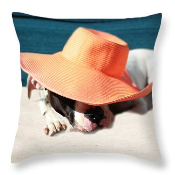 Throw Pillow featuring the photograph Beach Day For Bubba by Shelley Neff
