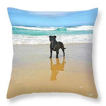 Throw Pillow featuring the photograph Beach Dog And Reflection By Kaye Menner by Kaye Menner