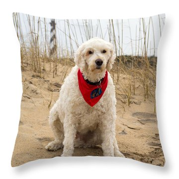 Beach Dog Throw Pillow by Marion Johnson