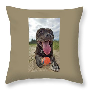Throw Pillow featuring the photograph Beach Dog - More Play? By Kaye Menner by Kaye Menner