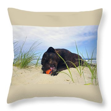 Throw Pillow featuring the photograph Beach Dog - Rest Time By Kaye Menner by Kaye Menner