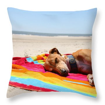 Beach Dreams Are Made Of These Throw Pillow