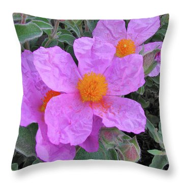 Beach Flower Throw Pillow by Arthur Fix
