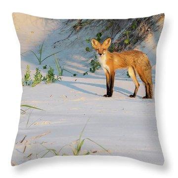 Beach Fox #3 Throw Pillow
