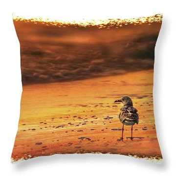 Beach Gull Throw Pillow