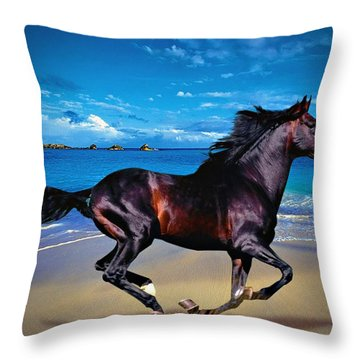 Beach Horse Throw Pillow