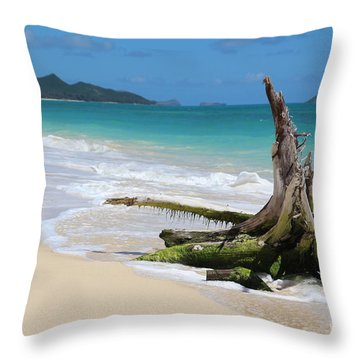 Beach In Hawaii Throw Pillow by Anthony Jones