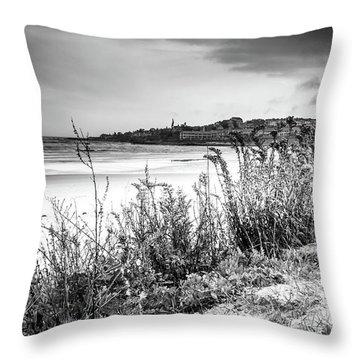 Beach In Ogunquit Throw Pillow