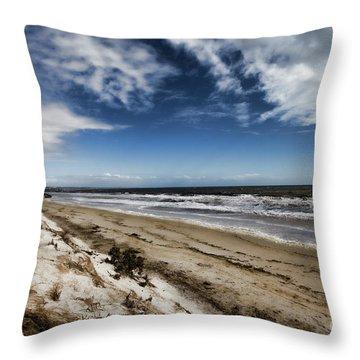 Throw Pillow featuring the photograph Beach Life by Douglas Barnard