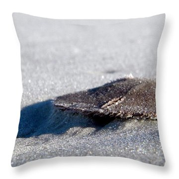 Beach Money Throw Pillow