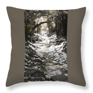 Throw Pillow featuring the photograph  Beach Park Storm Drain by Steve Sperry