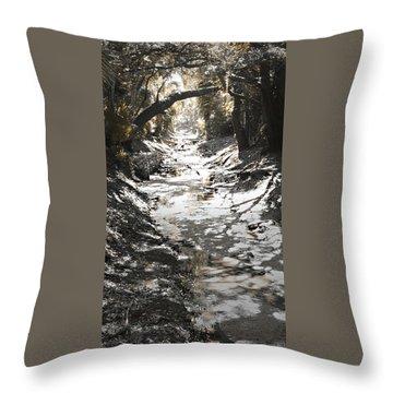 Beach Park Storm Drain Throw Pillow