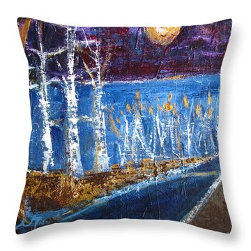 Beach Path At Night Throw Pillow