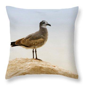 Throw Pillow featuring the photograph Beach Pose by Deborah Benoit