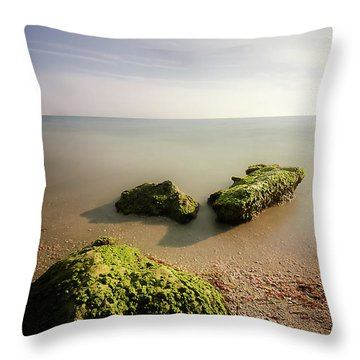 Beach Throw Pillow by RC Pics