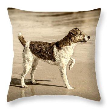 Beach Ready Throw Pillow