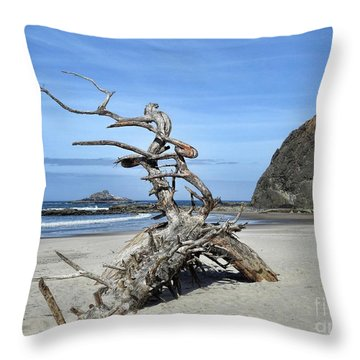 Throw Pillow featuring the photograph Beach Sculpture by Peggy Hughes