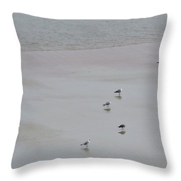 Beach Seagulls Throw Pillow