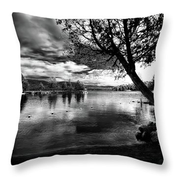 Throw Pillow featuring the photograph Beach Silhouette by David Patterson